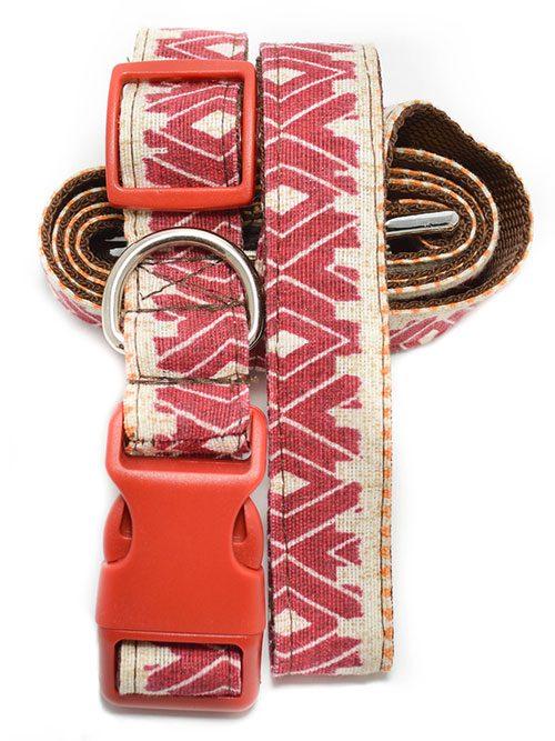 collar y Correa para perro kundu ceta dog