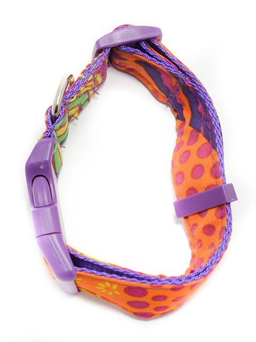 Collar de perro Masai Ceta Dog